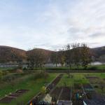 Ferienwohnung Spay - Ausblick auf den Rhein
